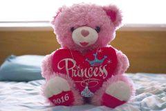 Princess Bear 2016