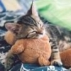 easy recipes for littles? - last post by prince-of-fluff